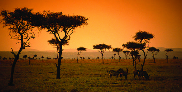 Kenya_sunset