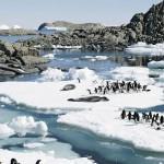 Des vacances en Antarctique, c'est possible !