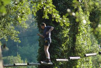 acrobatie-dasn-les-arbres