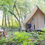 Des vacances en forêt : vous n'y avez pas pensé?