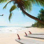 Hawaï : un petit bout de paradis à découvrir !